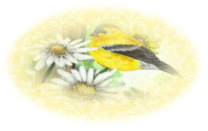 goldfinch on daisy envelope seal